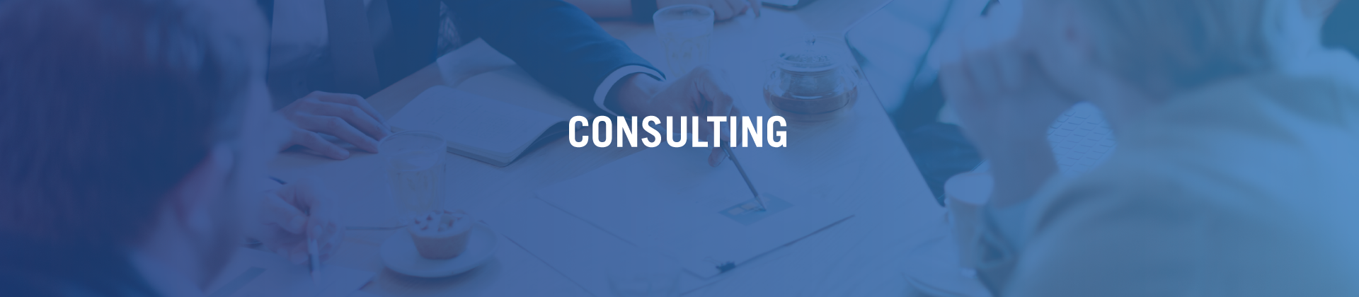 TLC_Banner_Consulting_Page